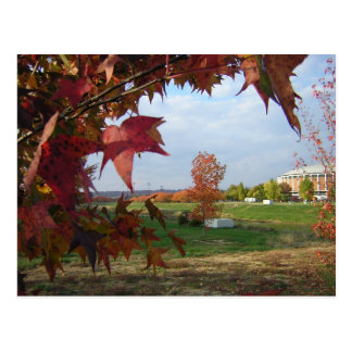 Autumn Over the Convo Postcard