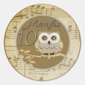 Autumn Owl 10 Months Sticker