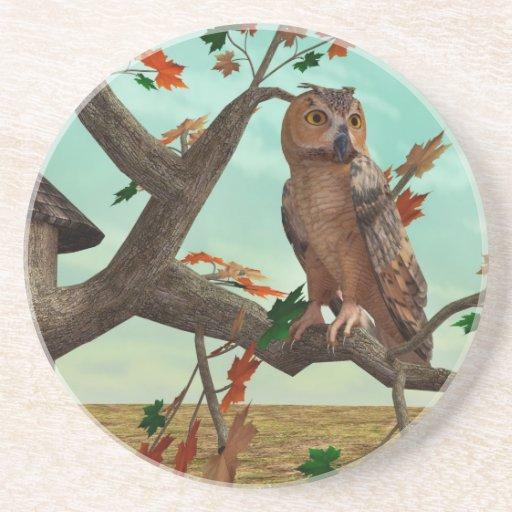 Autumn Owl Drink Coaster