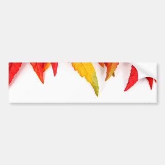 Autumn Painterly Leaf Bumper Sticker