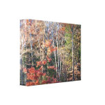 Autumn Paradise Wrapped Canvas (7) Gallery Wrap Canvas