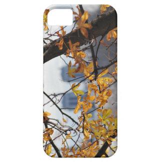 Autumn Paris Notre Dame IPHONECASE iPhone SE/5/5s Case