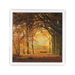 Autumn park acrylic tray