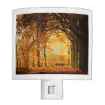 Autumn park nite light