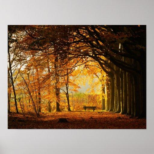 Autumn park print