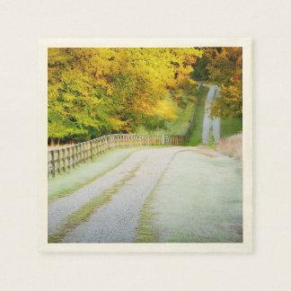 Autumn Path Disposable Napkin