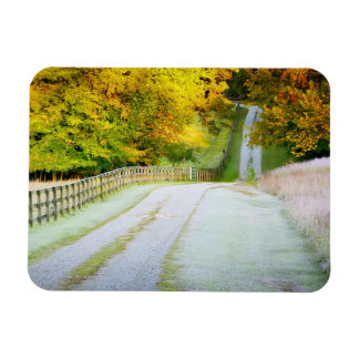 Autumn Path Rectangular Magnet
