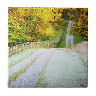 Autumn Path Tile