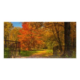 Autumn pathway photo card template