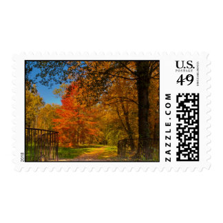 Autumn pathway stamps