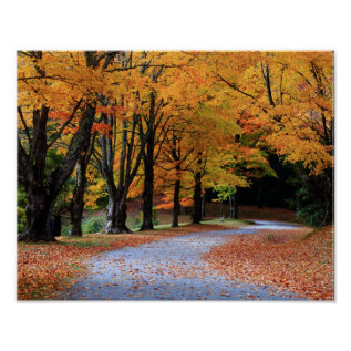 Autumn Pathway Poster at Zazzle