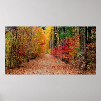 Autumn pathway print