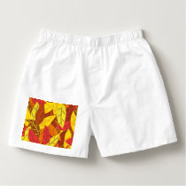 Autumn pattern colored warm leaves boxers