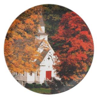 Autumn Peaking Color Vermont Melamine Plate