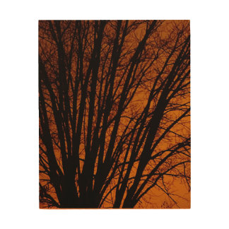 AUTUMN PERFECTION TREE AND SKY WOOD CANVAS