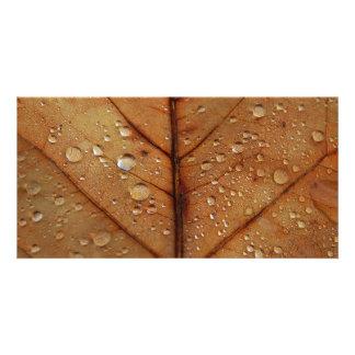 Autumn Photo Card