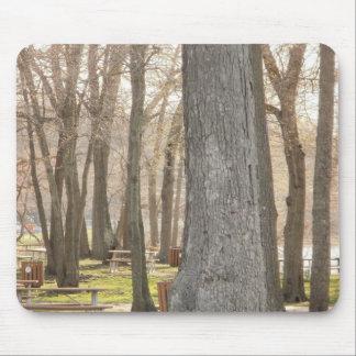 Autumn Picnic Trees Mouse Pad