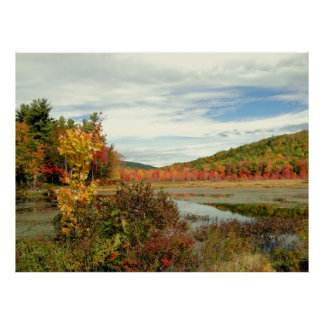 Autumn Pond Foliage Photography Poster