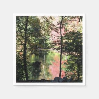 Autumn pond paper napkin