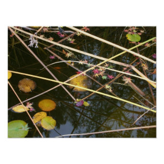Autumn Pond Posters