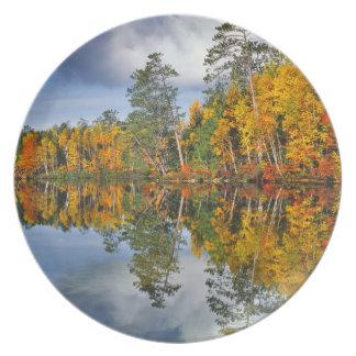 Autumn pond reflections, Maine Melamine Plate