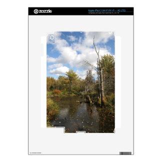 AUTUMN POND SCENE iPad 3 DECALS
