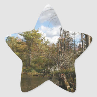 AUTUMN POND SCENE STAR STICKER