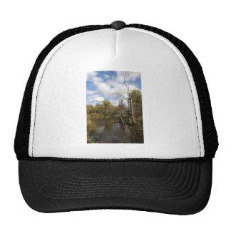AUTUMN POND SCENE TRUCKER HAT