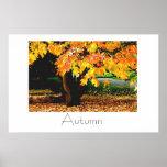 Autumn Poster Design
