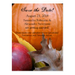 Autumn Pumpkin, Apple Fall Wedding Save the Date Postcards