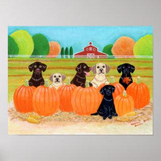 Autumn Pumpkin Labradors Painting Poster