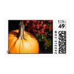 Autumn Pumpkin Stamps
