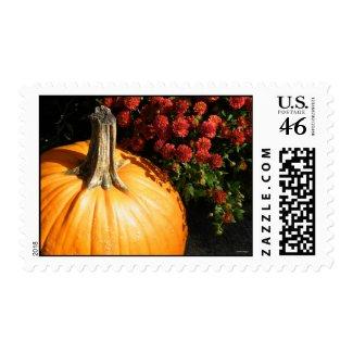 Autumn Pumpkin Stamps stamp