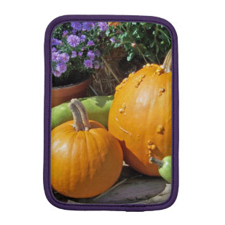 Autumn Pumpkins and Flowers iPad Mini Sleeve