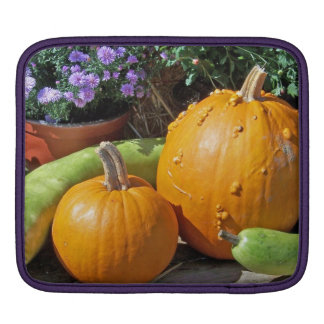 Autumn Pumpkins and Flowers Sleeve For iPads