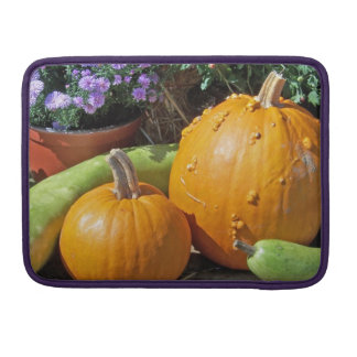 Autumn Pumpkins and Flowers Sleeve For MacBook Pro