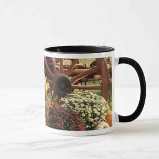 Autumn Pumpkins And Mum Display Mug
