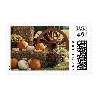 Autumn Pumpkins And Mum Display Postage