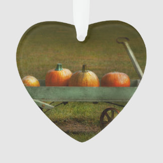 Autumn - Pumpkins - Free ride Ornament
