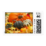 Autumn Pumpkins & Leaves postage