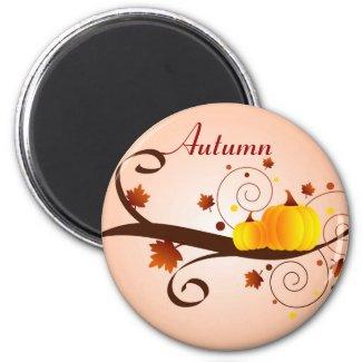 Autumn pumpkins - Magnet magnet
