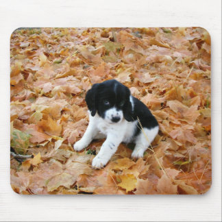 Autumn Puppy Mouse Pad