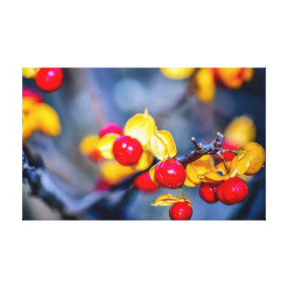 Autumn Red Berry and Yellow Leaf Canvas Print