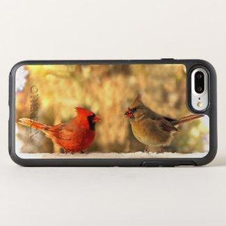 Autumn Red Cardinal Birds Animal
