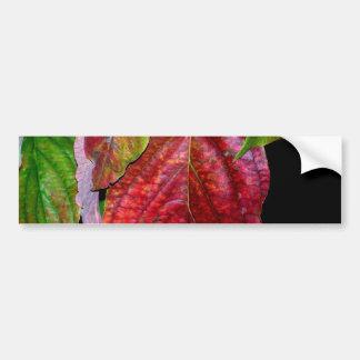 Autumn Red Dogwood Leaf Bumper Sticker