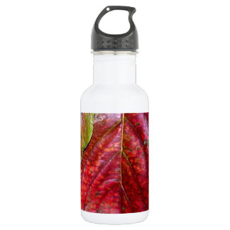 Autumn Red Dogwood Leaf Water Bottle
