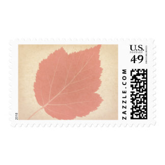 Autumn Red Leaf Custom Postage Blank