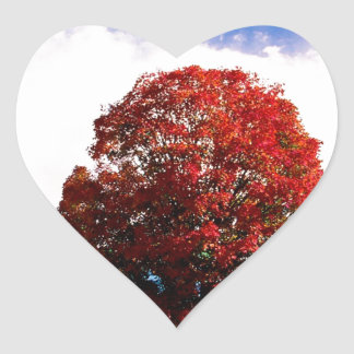 Autumn Red Maple Tree Forest Clermont Kentucky Heart Sticker