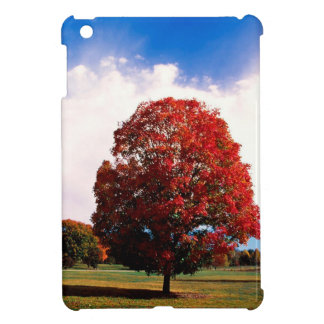 Autumn Red Maple Tree Forest Clermont Kentucky iPad Mini Cover