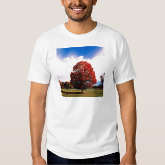 Autumn Red Maple Tree Forest Clermont Kentucky T-Shirt